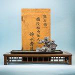 150531-Bonsai-070